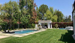 Tarzana backyard