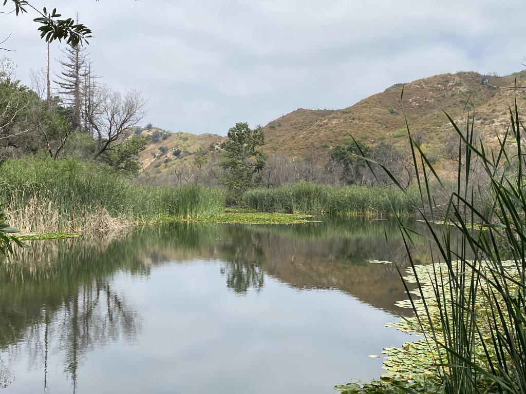 Century Lake - Malibu Creek State Park