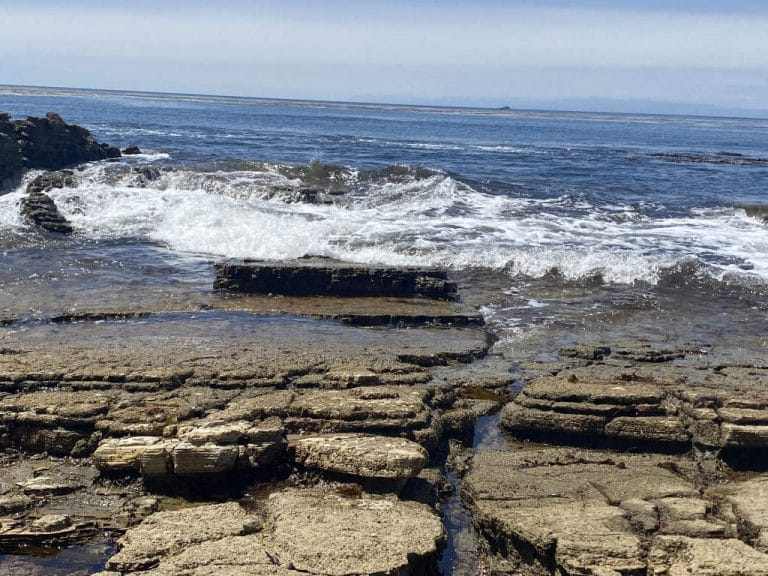 Rancho Palos Verdes Coastal Trail Surf