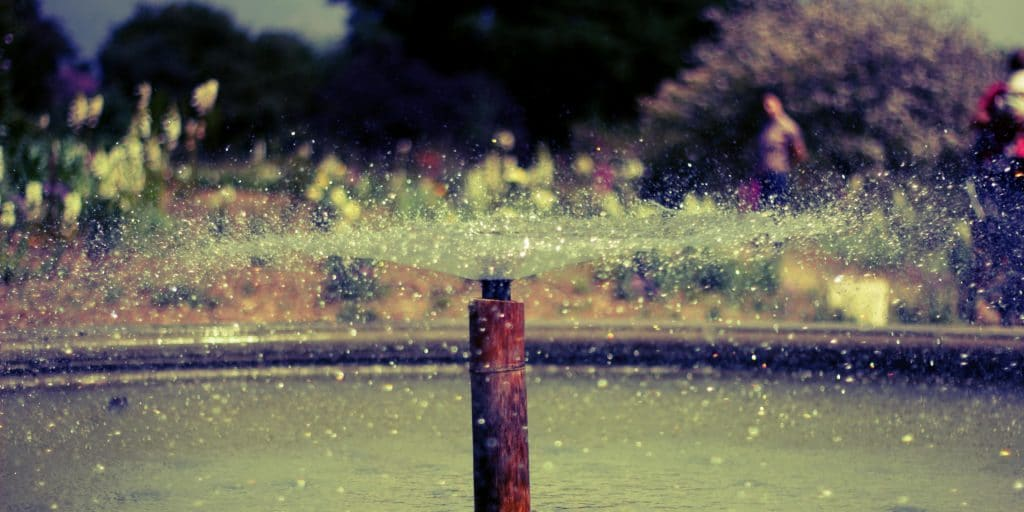 Fountain spraying water in Descanso Gardens
