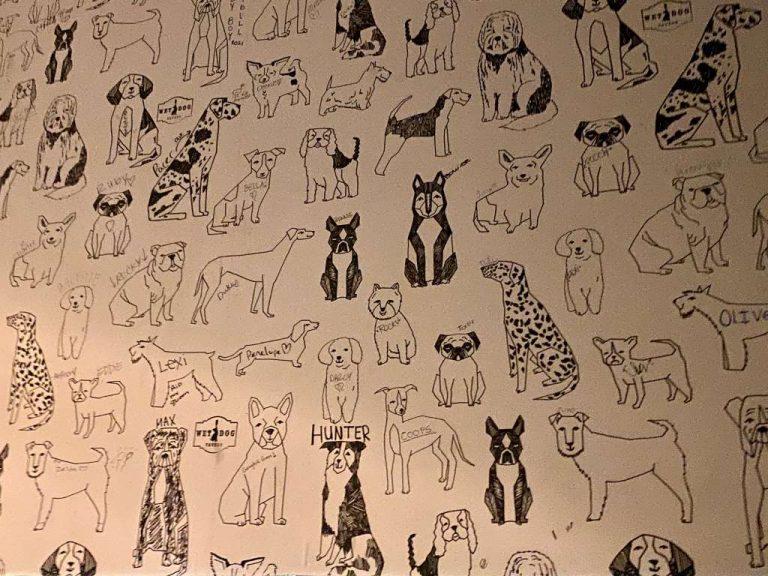 Wet dog Tavern Doggy Wallpaper